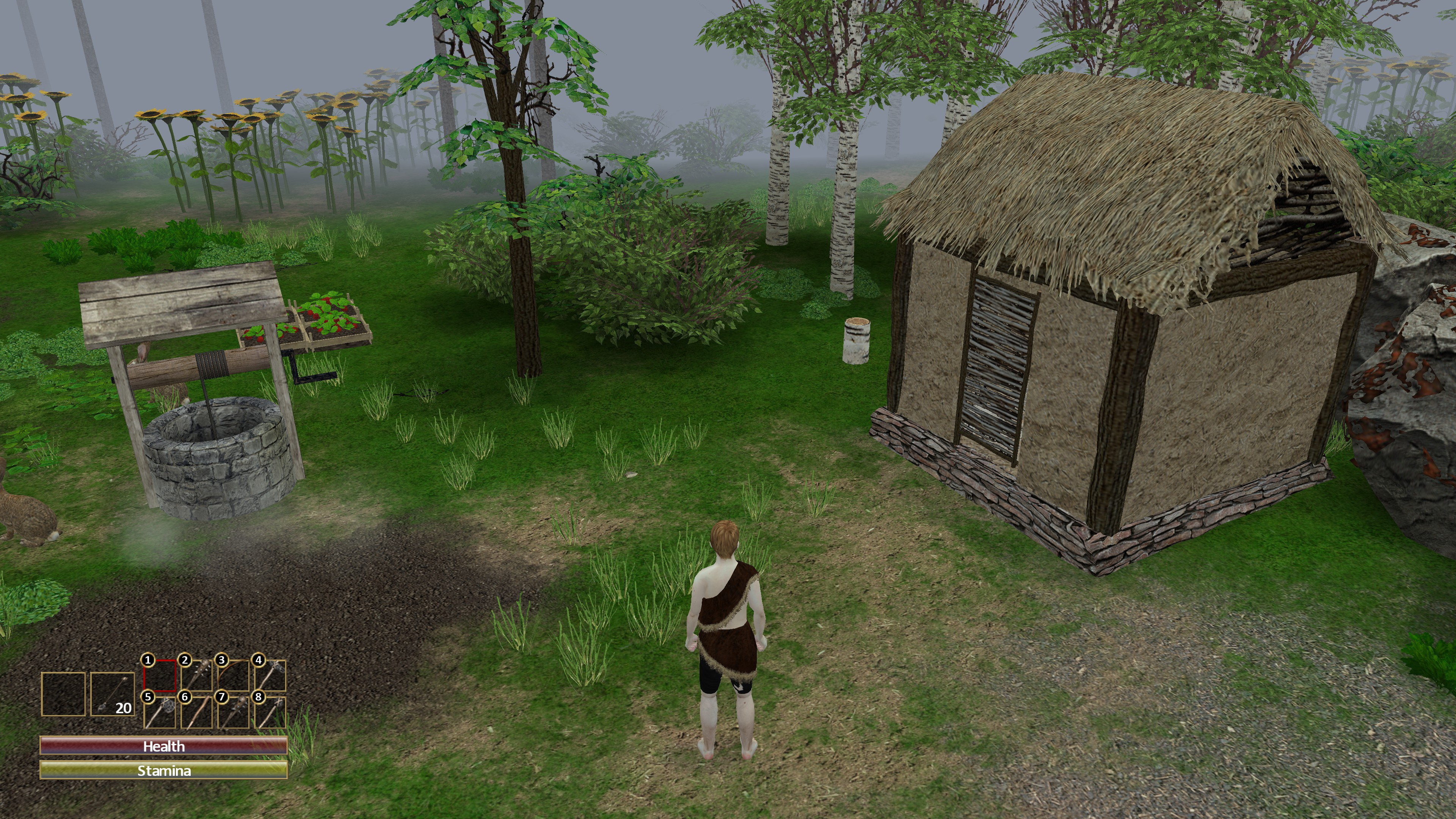 Character stands in front of house, well, and farm while surrounded by trees