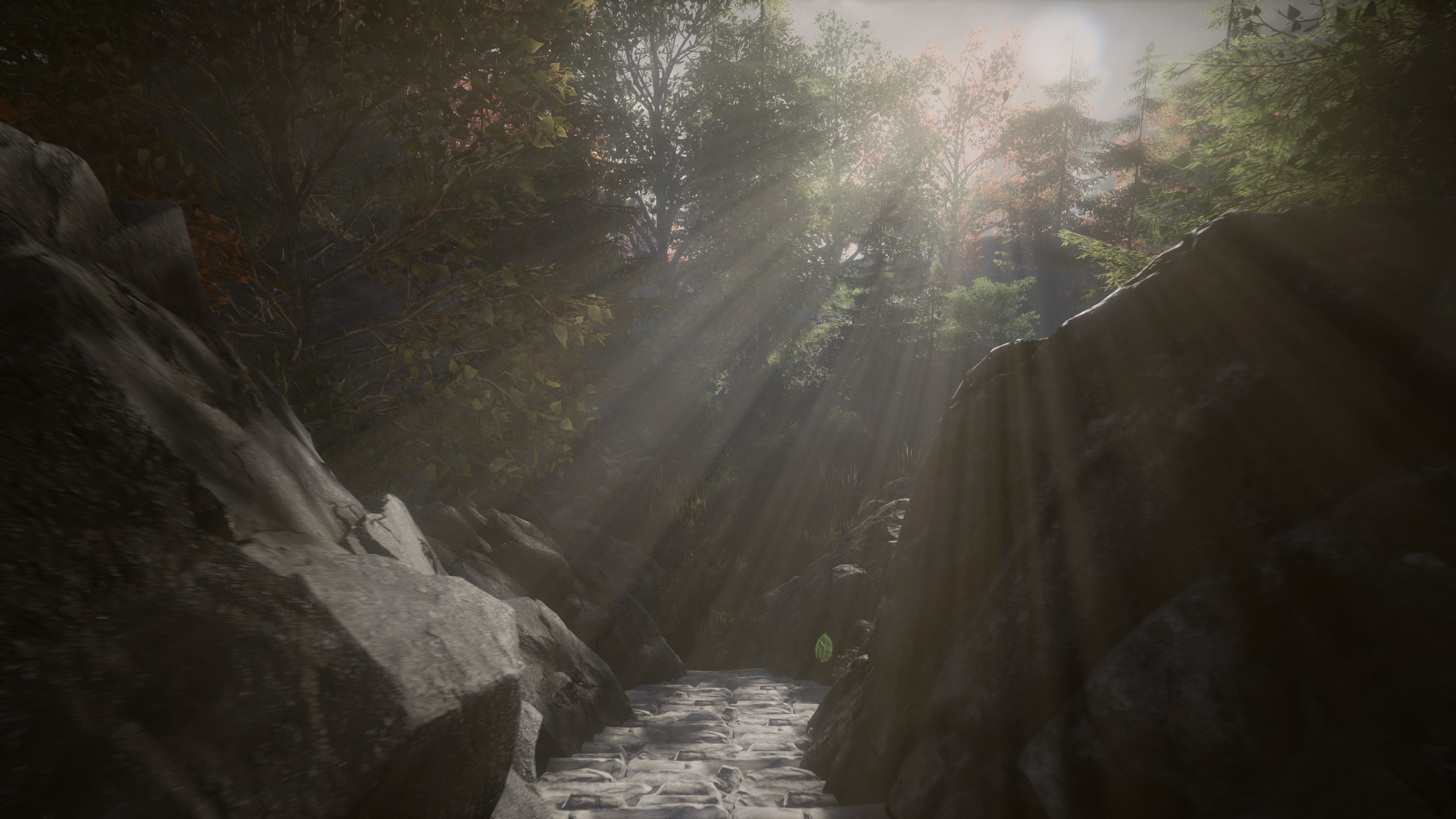 Sunlight streams through trees onto a stone path between large boulders.